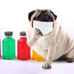 『目上の人やお客さんの前でマスク着用は失礼』とされることに異議を唱える。